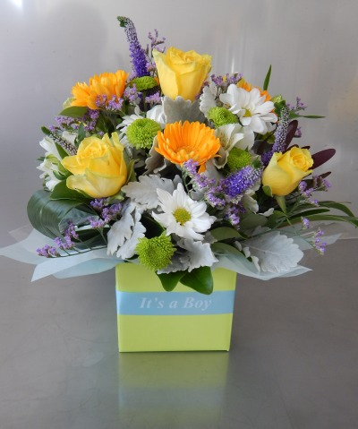 Baby Boy Box Arrangement Gold Coast Florist Bunches In Robina